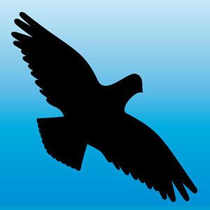 Warnvogel Autocollant 25 Cm Noir Faucon Oiseau Effroi Fenêtre Protection Deco Diapositive-afficher Le Titre D'origine Pour ExpéDition Rapide