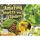 Amazing Insects and Spiders by Kelly Gaffney (Paperback, 2016)