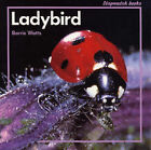 Ladybird by Barrie Watts (Mixed media product, 1999)