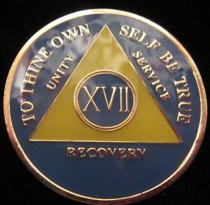 Blue Alcoholics Anonymous AA 17 Year Medallion Token Chip Coin Sobriety Sober