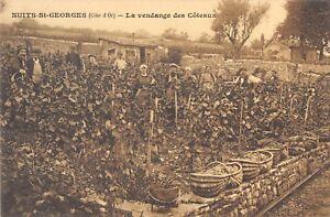 CPA-21-NUITS-SAINT-GEORGES-LA-VENDANGE-DES-COTEAUX