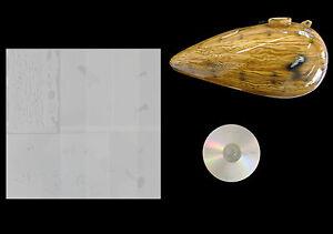 Gußeisen 450g Unterricht Kunst mittelfein Orgonitbau magnetisch Eisenspäne