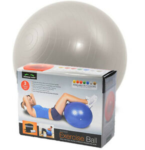 65CM-SILVER-GYM-BALL-EXERCISE-Anti-Burst-YOGA-FITNESS-AEROBIC-GYMBALL-CORE