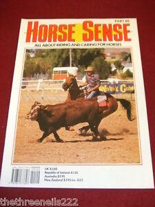 HORSE SENSE # 80 SELLE FRANCAIS