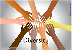 *NEW* Diversity A4 POSTERS~OFSTED<wbr/>~Nursery~Child<wbr/>minder~School~<wbr/>3 Designs view all!