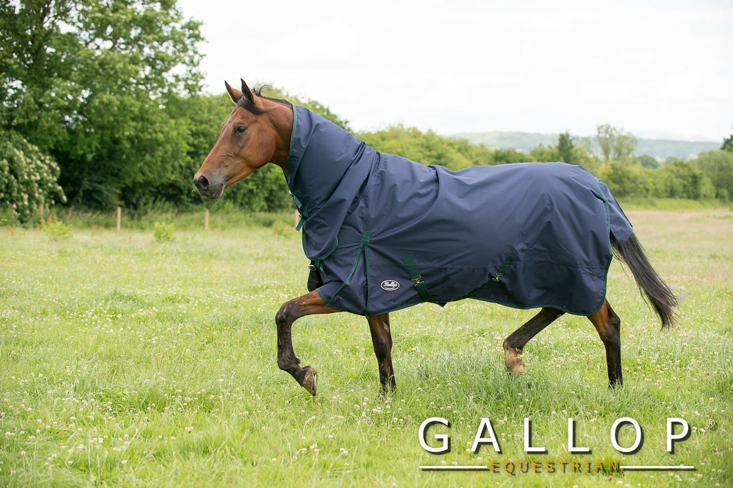 Gallop Trojan Lite-Weight Combo Rug for Horses and Ponies, various sizes