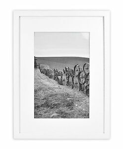 Wall-Photo-Frame-Collection-12-034-x16-034-Photo-Wood-Framewith-White-Mat-amp-Real-White