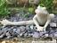 Large 33cm Yoga Frog stone effect garden pond frog lover ornament decoration