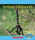 Spider Monkeys by Vicky Franchino (Hardback, 2014)
