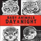 Baby Animals Day and Night von Phyllis Limbacher Tildes (2016, Gebundene Ausgabe)