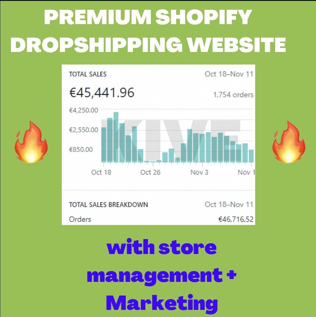 Professional 7 Figure Product Shopify Dropshipping Website Business + Marketing