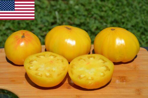 2020 Seeds 40 Huge Lemon Oxheart Organic Tomato Seeds BIG Heirloom