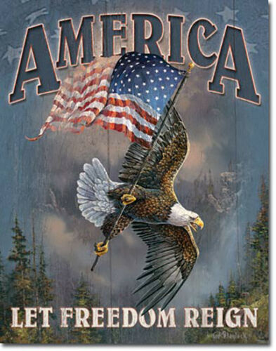 America Let Freedom Ring Eagle Patriotic American Flag USA Metal Sign