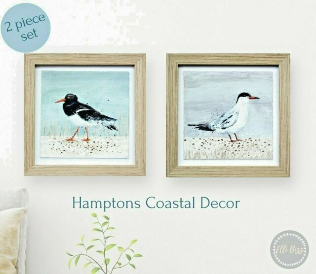 Framed Seabird Print Set Hamptons Coastal Beach Marine Home Decor Gift FREE POST