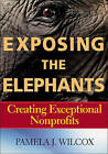 Exposing the Elephants: Creating Exceptional Nonprofits by Pamela J. Wilcox (Paperback, 2014)