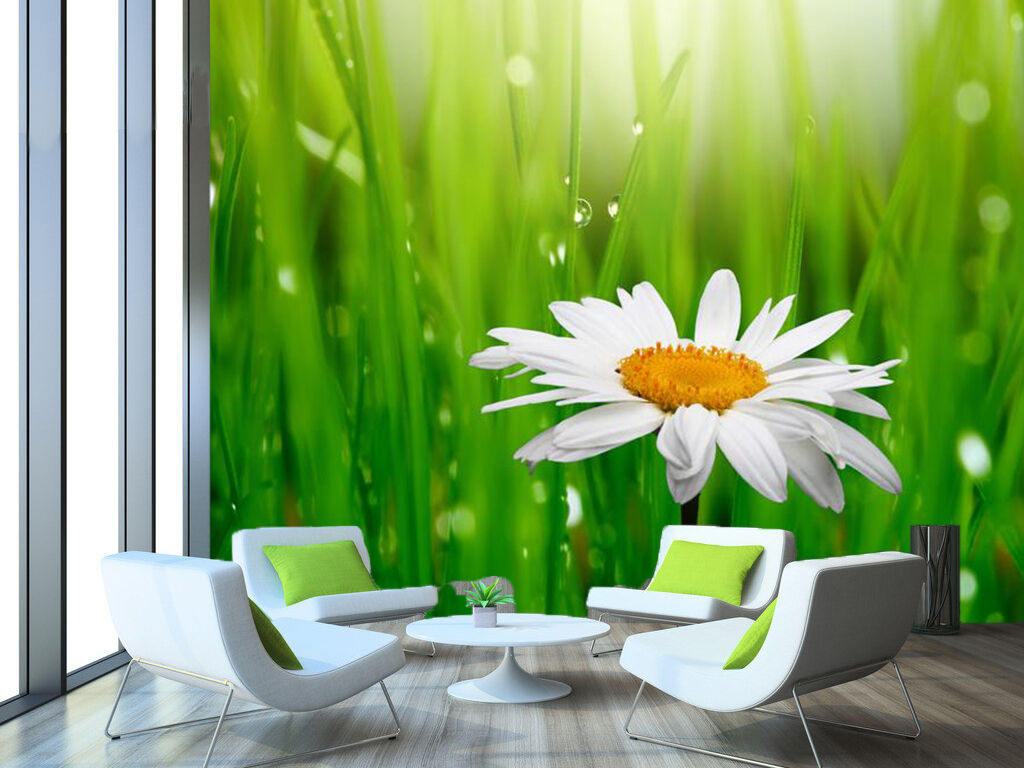3D Grass dew flowers Wall Paper Print Wall Decal Deco Indoor Wall Murals