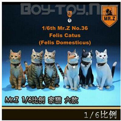 Z MRZ036 FC005 1//6 House Cat Model Animal Figure 12/'/' Doll Accessories Mr