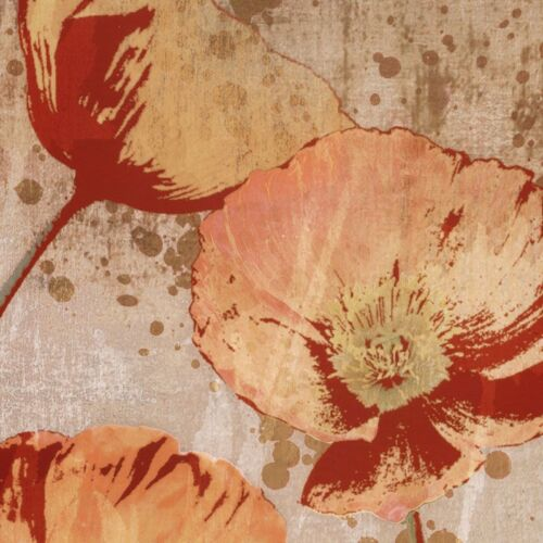 POPPY HEAT I 27x27 27x27 SET by TANDI VENTER 2PC FLORAL CANVAS and II