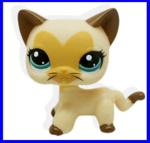 Buy 2pcs 3573 1116 Rare Littlest Pet Shop Short Hair Cat Kitty Lps