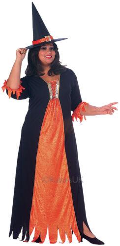 HALLOWEEN FANCY DRESS ~ Donna Gotico Strega Plus Size