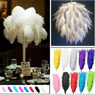5pcs Real Large Ostrich Feathers For Craft Wedding Xmas Decorations 20~22 inch