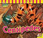 Centipedes by Professor John Willis (Paperback / softback, 2016)