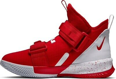 Nike LeBron Soldier 13 SFG TB
