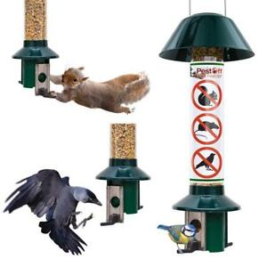 PestOff-Hanging-Squirrel-Proof-Sunflower-Mixed-Seed-Wild-Bird-Feeder