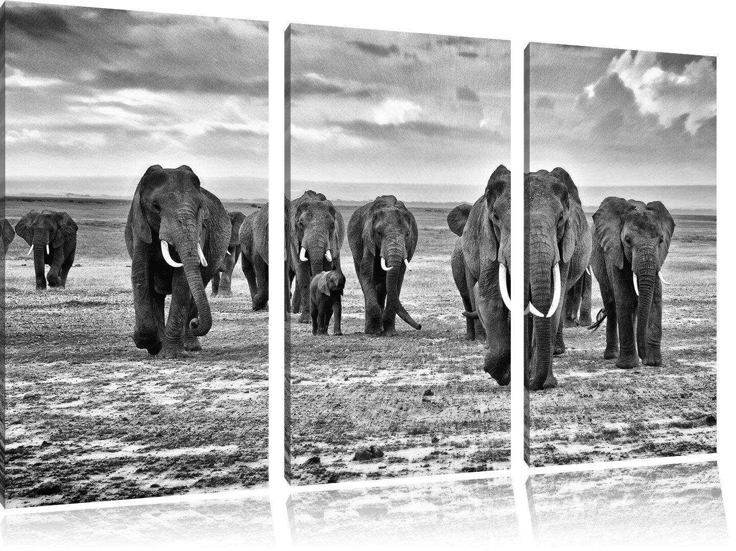 Elefanti Famiglia Nella Savana 3-Teiler Quadro su Tel Decorazione Parete