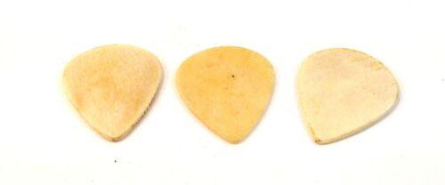 Clayton Guitar Picks Exotic Series Sleek Bone 3 Pack