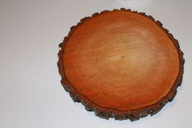 Baumscheiben  5 Stück 20-25 cm