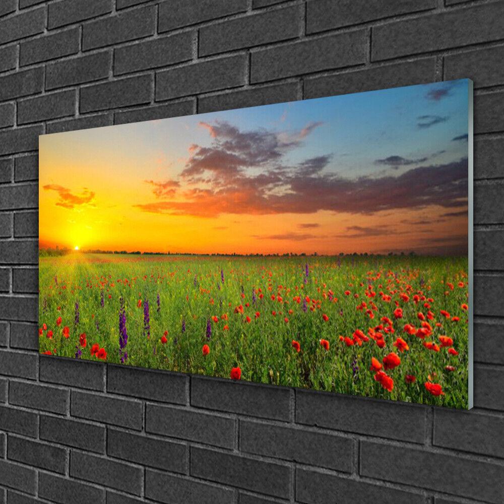 Tableau sur verre Image Impression 100x50 Nature Fleurs Prairie Soleil