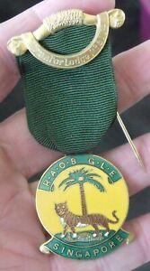VINTAGE BUFFALOES R.A.O.B. G.L.E. SINGAPORE EQUATOR LODGE No 8174 JEWEL, MEDAL.