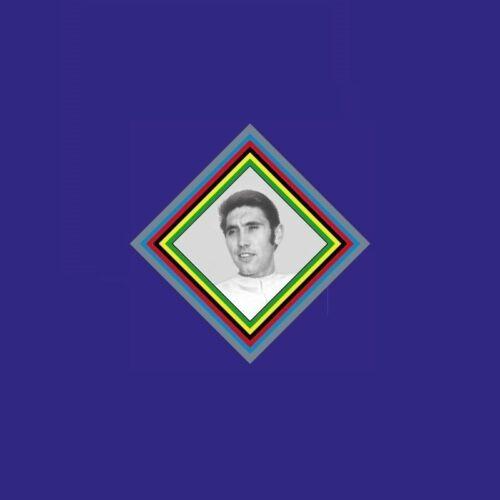 Transfer Eddy Merckx Head or Seat Tube Bicycle Decal Sticker n.12