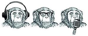 HEAR-SEE-SPEAK-NO-EVIL-VINYL-STICKERS-CAR-VAN-TRUCK-TAXI-LORRY