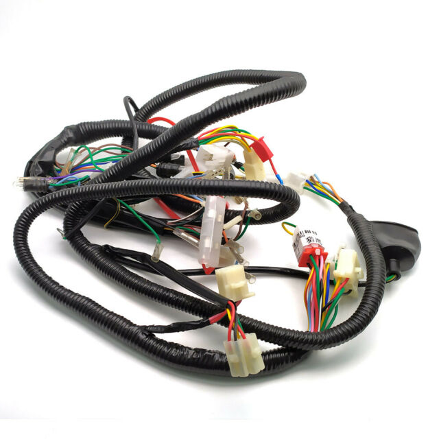 Complete Electrics All Wiring Harness Wire Loom Assembly