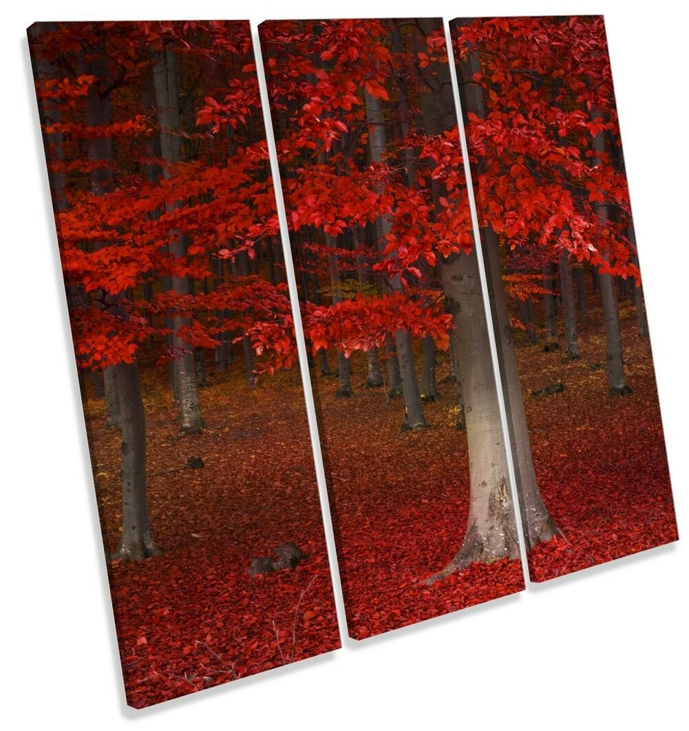 rot rot rot Forest Landscape Picture TREBLE CANVAS WALL ART Print 0a2bb3