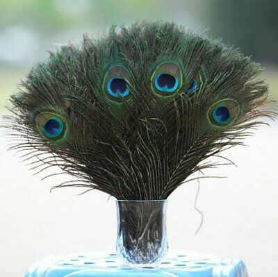 """50Pcs 100/% Real Natural Peacock Feathers 10-12/"""" Stage Costume Makeup DIY Tool US"""