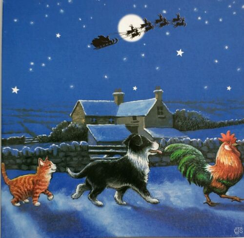 120 x Cartes de Noël sur la Ferme Chat Chien Coq Santa/'s Noël Pack Job Lot