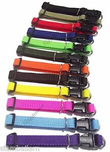 Lot Of 12 Different Colors Nylon ID Whelping Collar Small Puppy Pet Dog Collars