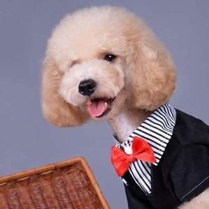 Details about Pet Dog Cat Puppy Clothes Wedding Suit Tuxedo Costume  Collared Shirt XS -XXL