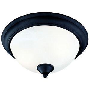 matte black flush mount ceiling light 545061. Black Bedroom Furniture Sets. Home Design Ideas