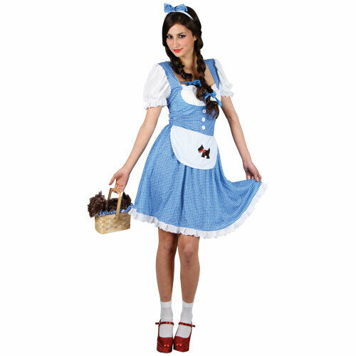 Dorothy Wizard of Oz Longer Length Storybook Womens Fancy Dress Costume