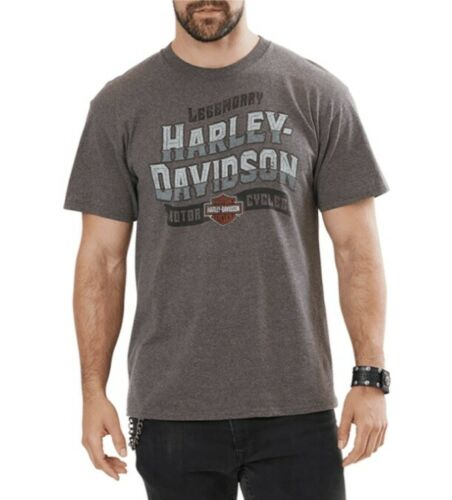 5L33-HH36 Dublin Harley-Davidson® Old Antics Men/'s Short Sleeve T-Shirt