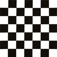 Checkered Flag Nascar Flag Black And White Check Coaster Set U Pick Set 1/4