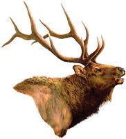 Elk Car Magnet Auto Truck Safe Hunting 8.5 High Magnetic Art Wild Animals