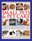 The Illustrated Practical Guide to Small Pets & Pet Care: Hamsters, Gerbils, Guinea Pigs, Rabbits, Birds, Reptiles, Fish by David Alderton (Hardback, 2013)