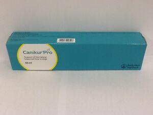 Canikur-Pro-Paste-60ml-Premium-Service-Fast-Dispatch