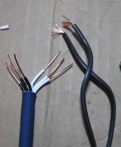 Evidence Audio Siren II Speaker 1/' Cable for COMBO amp!