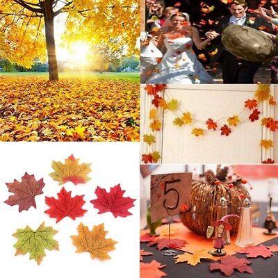 200-1000pcs Fall Silk Leaves Wedding Favor Autumn Maple Leaf Decorations